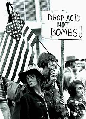 [Picture of Drop Acid Not Bombs sign at anti War March]