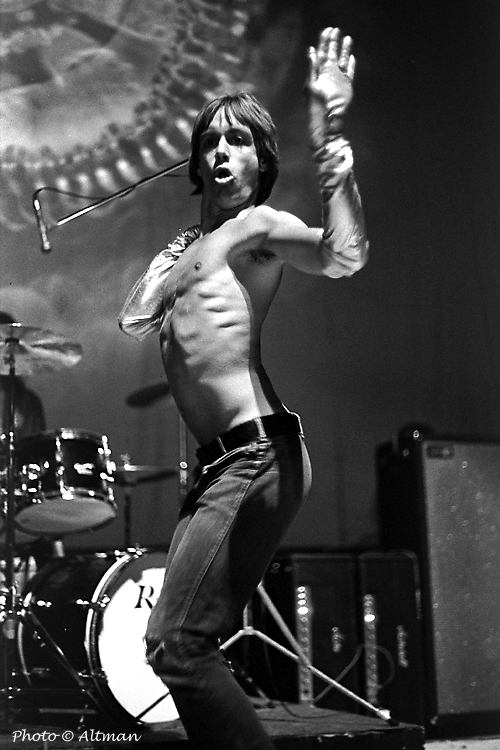 [Photo:Iggy Pop]